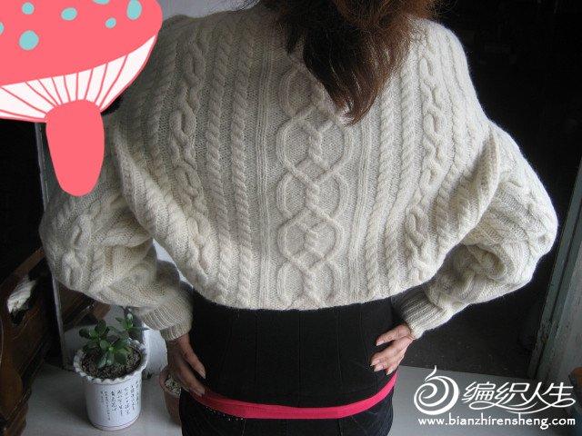 自己编织的羊绒衣 309_副本.jpg