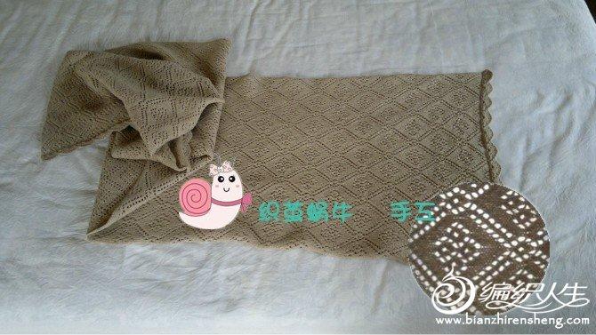 织茧蜗牛3.jpg