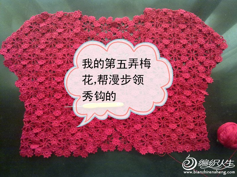 亚麻,二十朵花