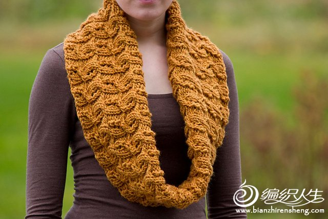 winter wheat cowl2.jpg