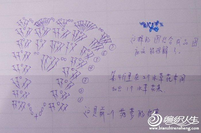 菠萝裙图解3.jpg