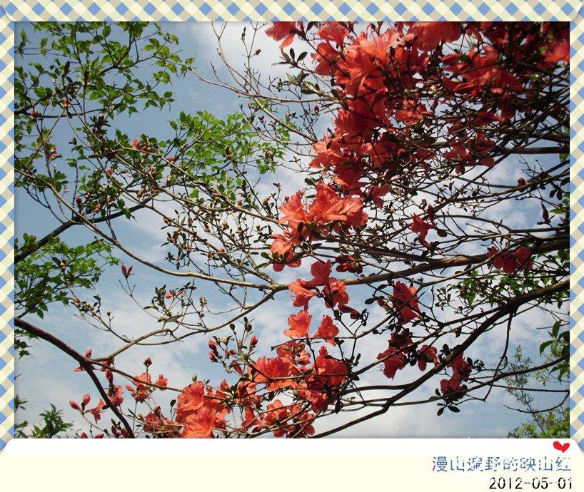img_1448_副本.jpg
