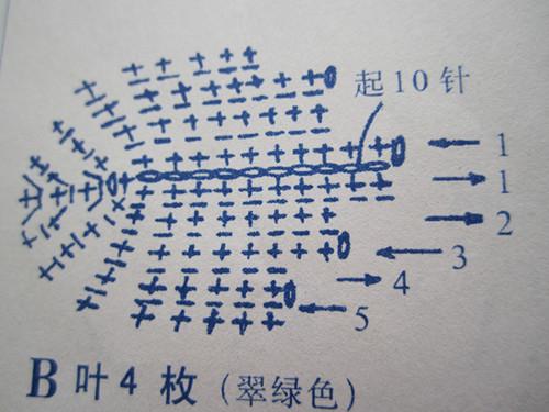 照片 452_副本.jpg