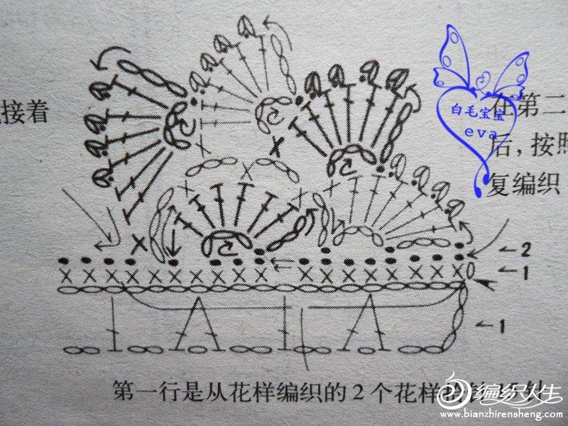 SDC11520_副本.jpg