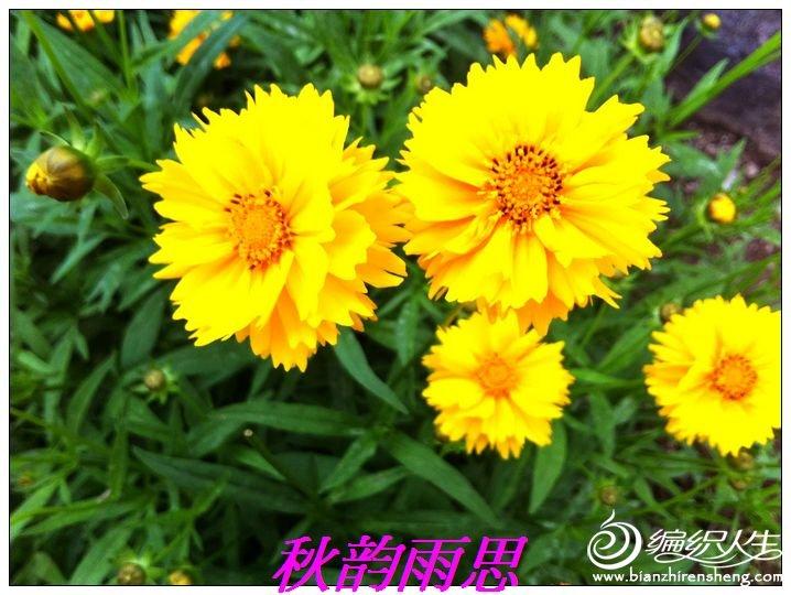 nEO_IMG_照片 264.jpg