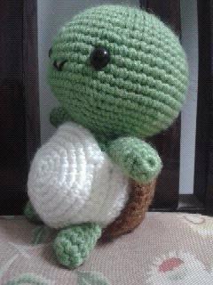 小龟龟.JPG