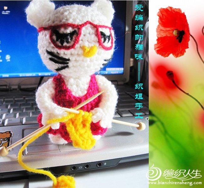 织姐手工-爱编织的猫咪.jpg