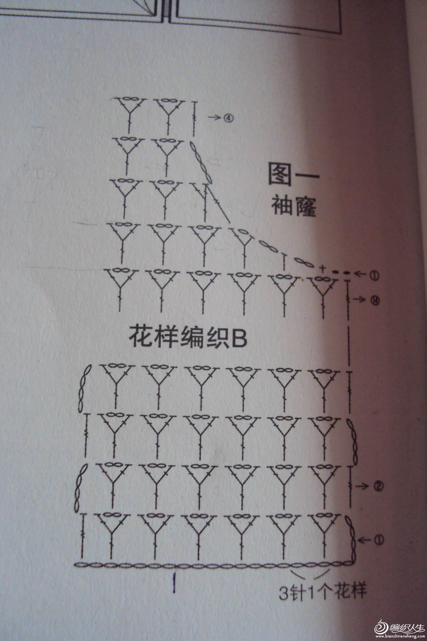 DSC02163.1.jpg