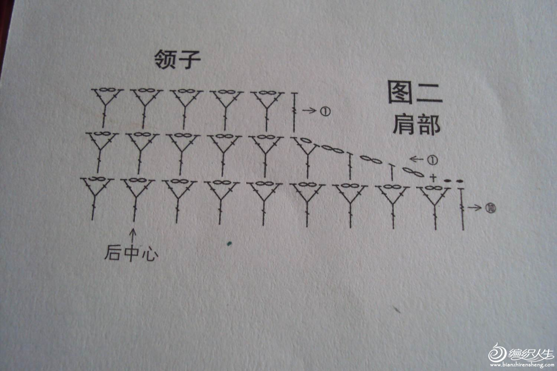 DSC02161.1.jpg