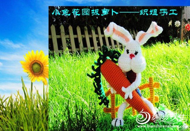 我家花园四月花卉——织姐拍摄- (4).jpg