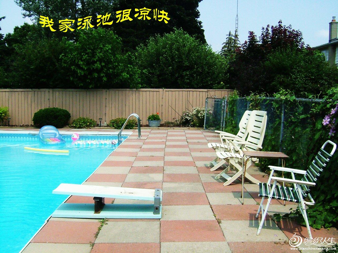 我家花园四月花卉——织姐拍摄- (8).jpg
