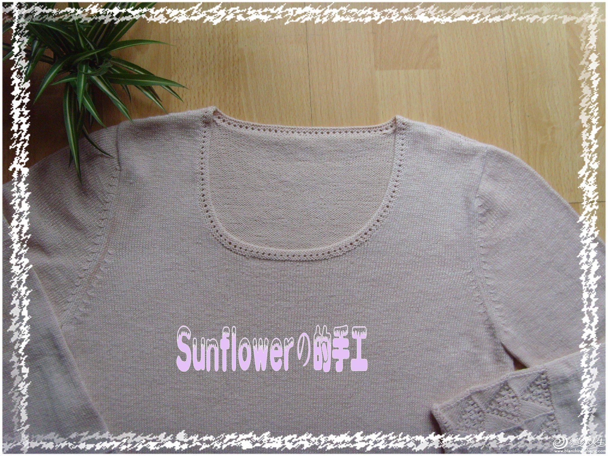 SNV31675_conew1.JPG