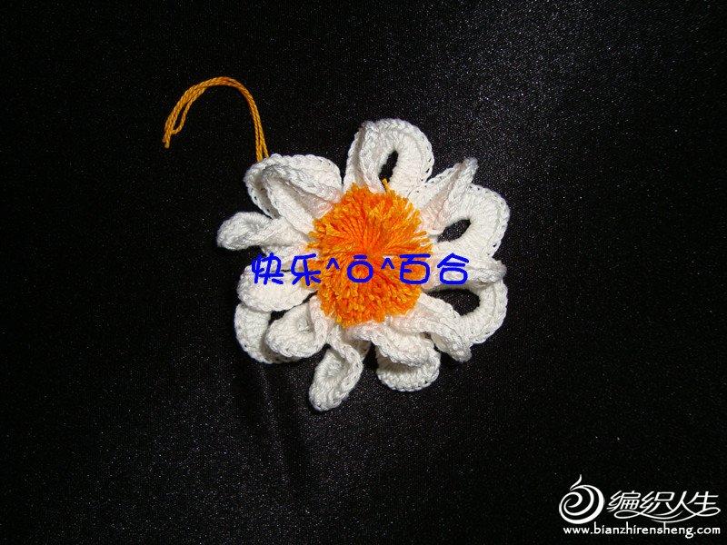 DSC08259_����.jpg