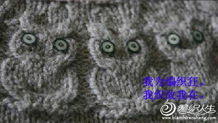 猫头鹰毛衣-3.jpg