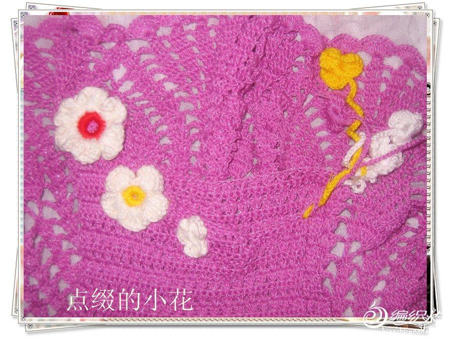 2012-016-紫爱--菠萝群 017花_美图.jpg
