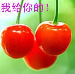 樱桃.jpg