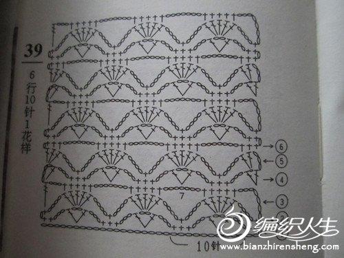 照片 477_副本.jpg