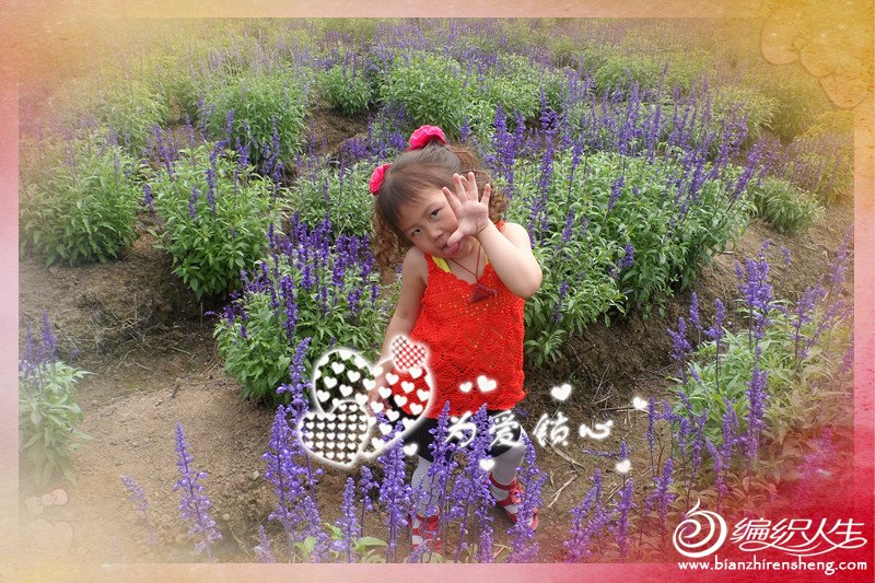 SAM_0642_副本.jpg