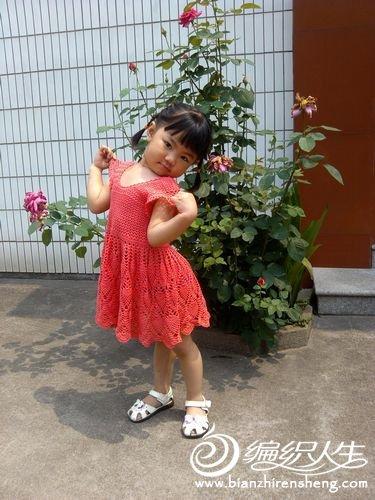 IMG_20120613_103452.jpg