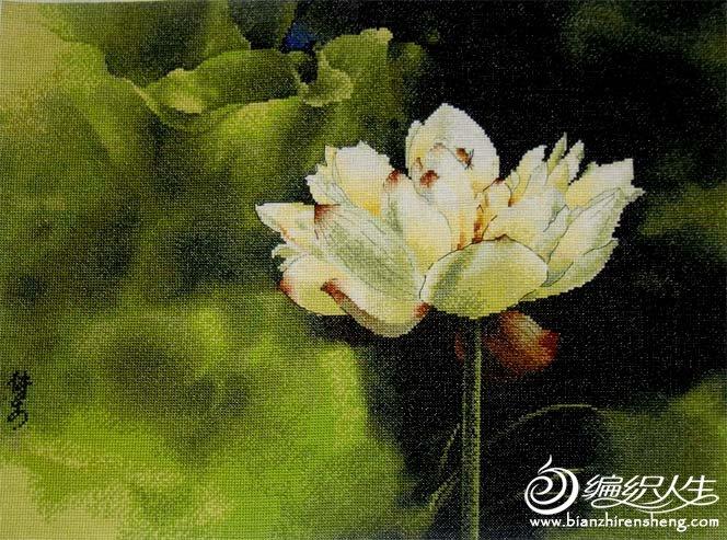十字绣(静玉生香).jpg