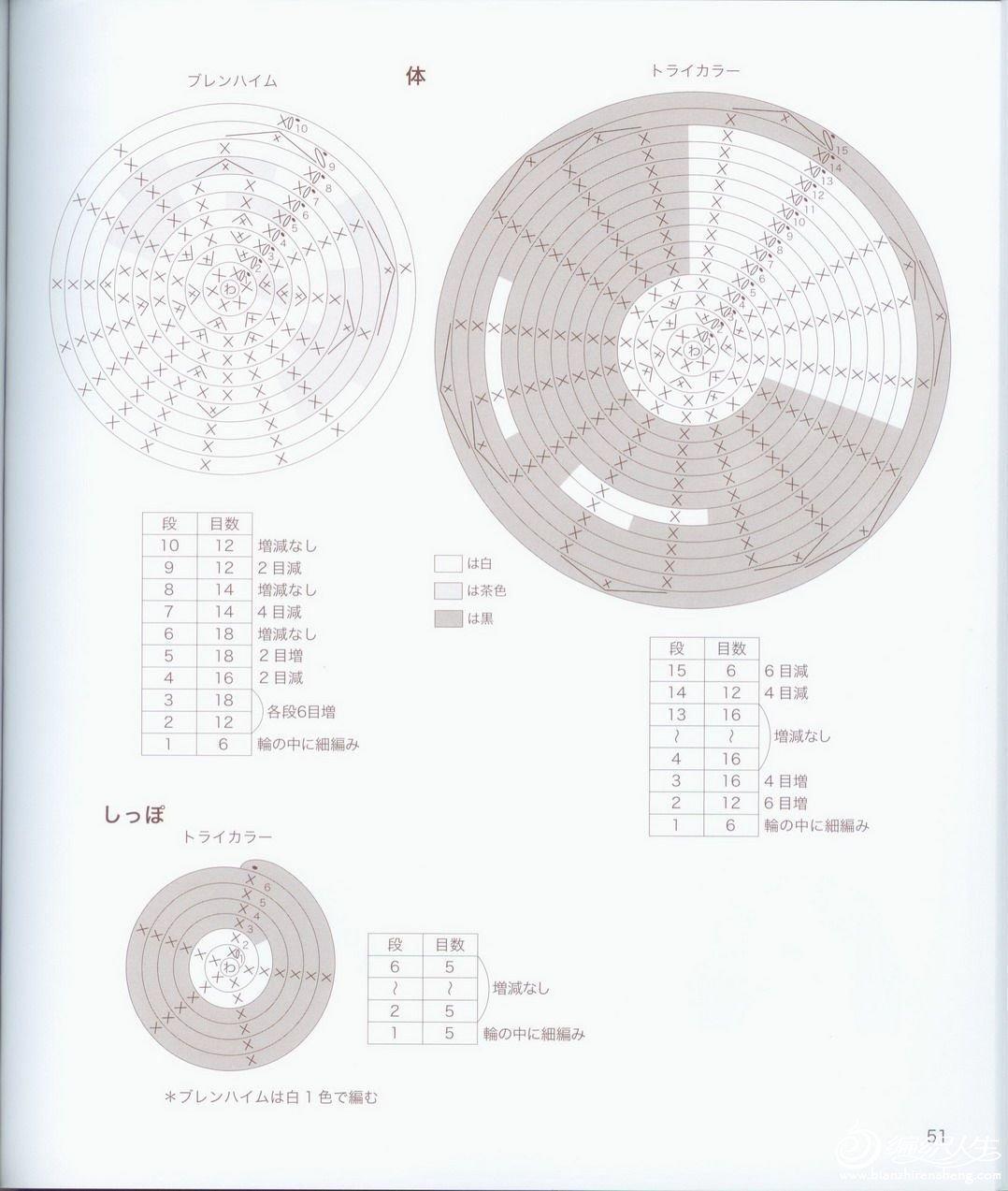 D151.jpg