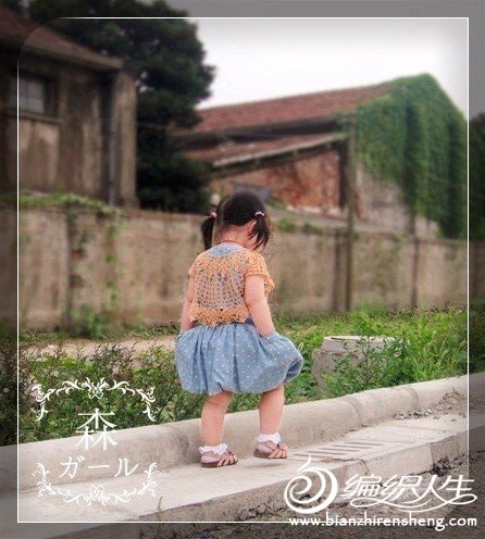 雏菊9.jpg