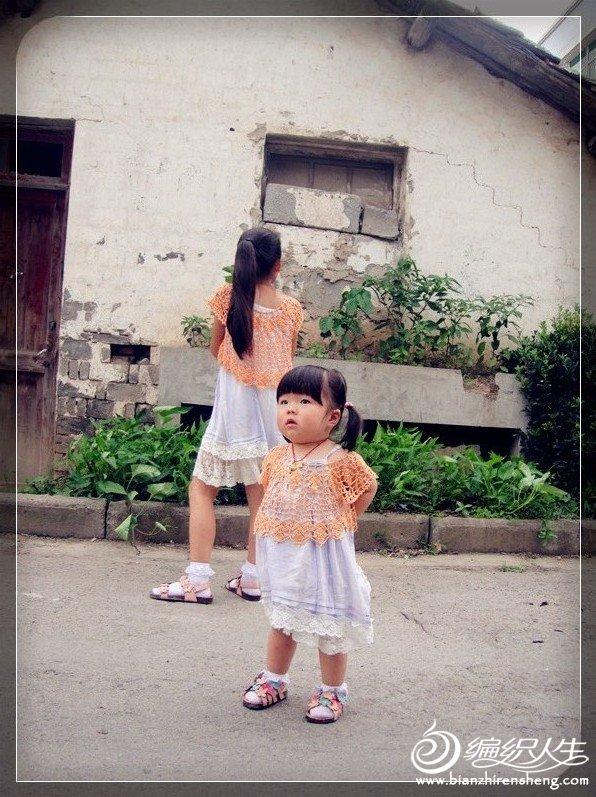 雏菊12.jpg