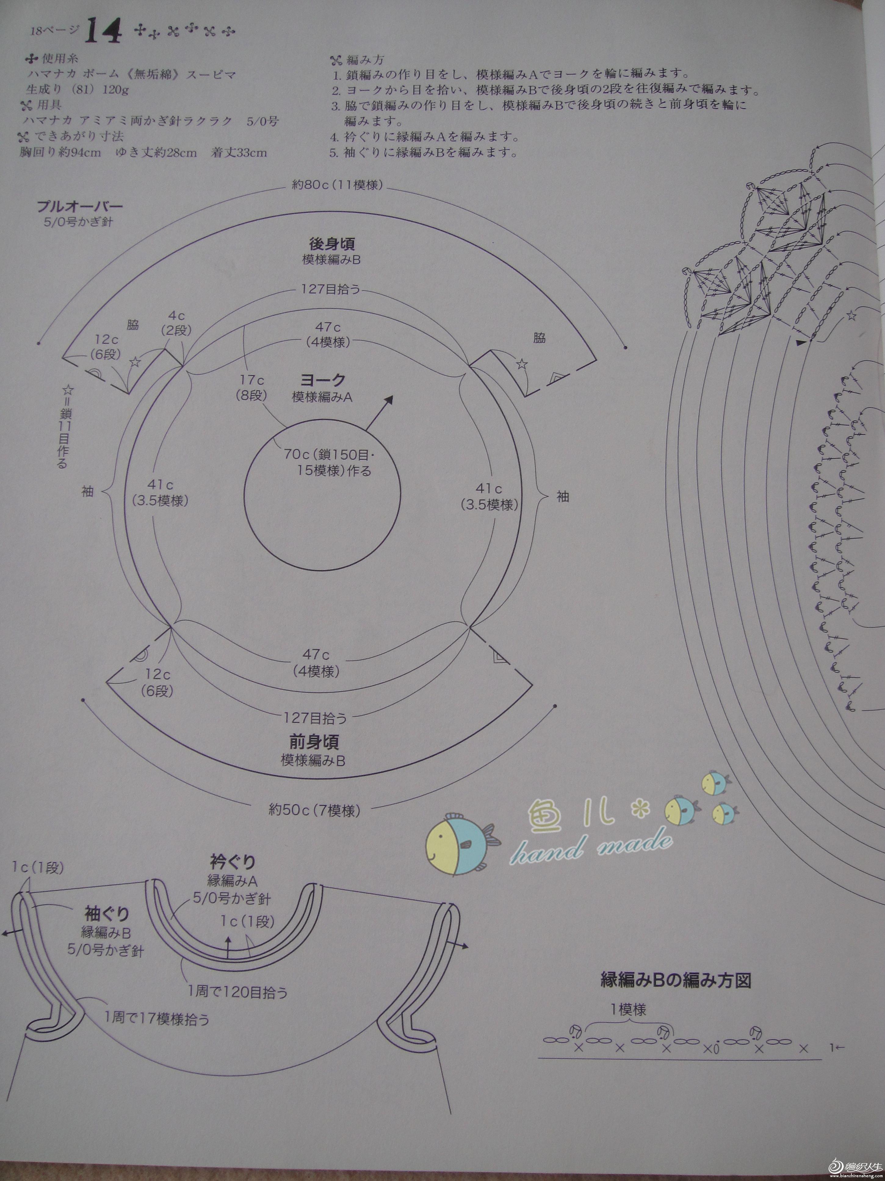 雏菊图解2-1.jpg