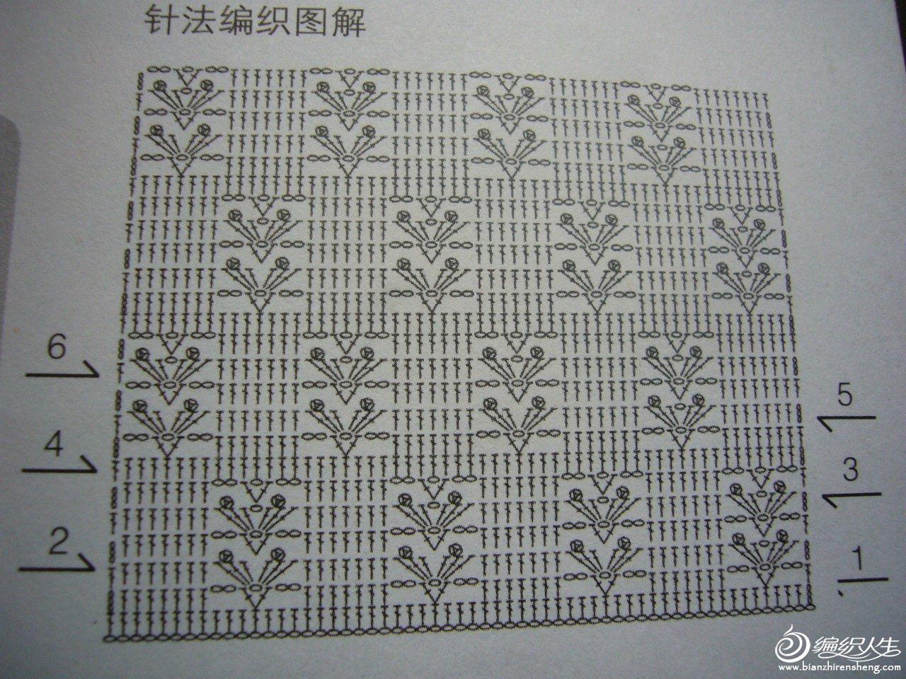 P1140083.JPG