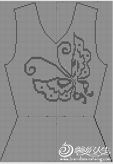 蝴蝶图-前面.jpg