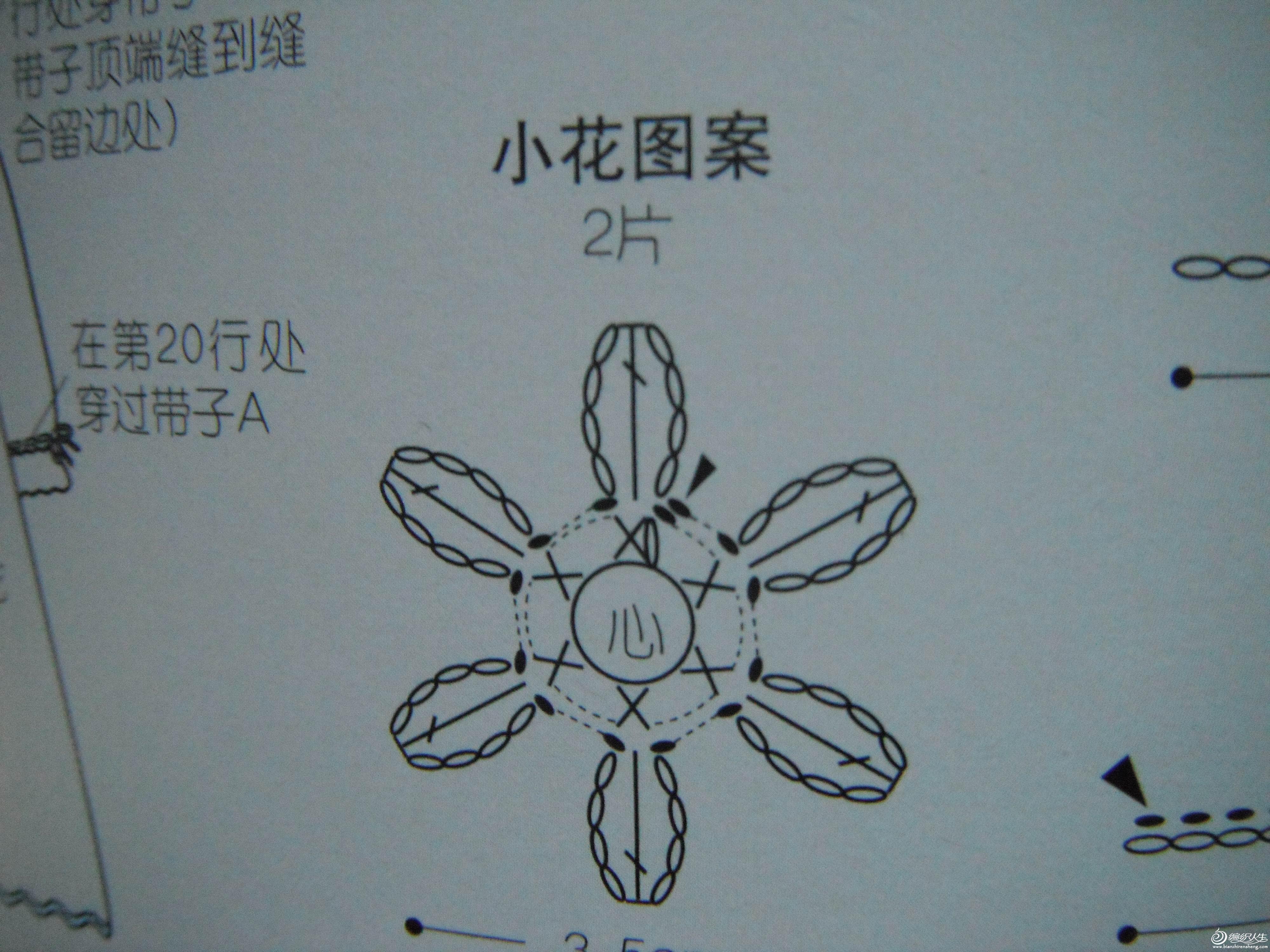 DSCF7343.jpg