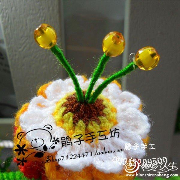 conew_23-2.jpg