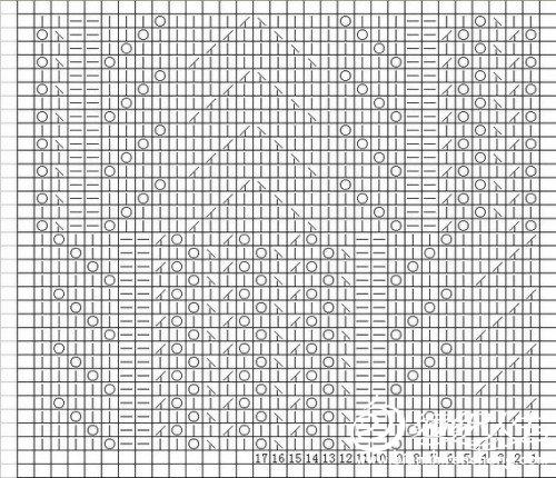 棕榈花图解.jpg
