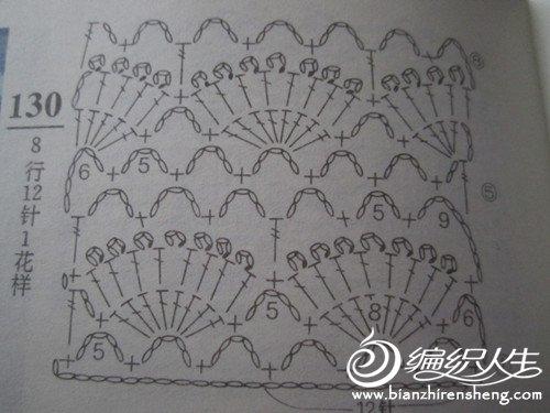 照片 484_副本.jpg