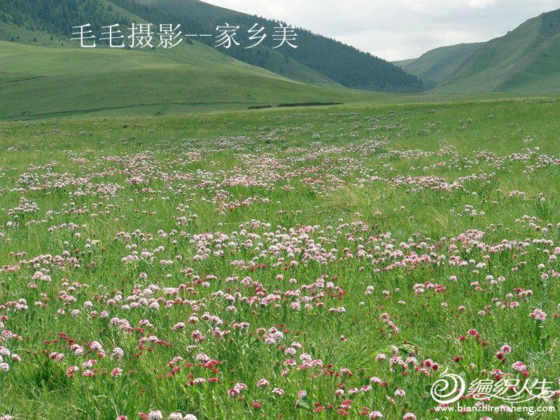 DSC04644_副本.jpg