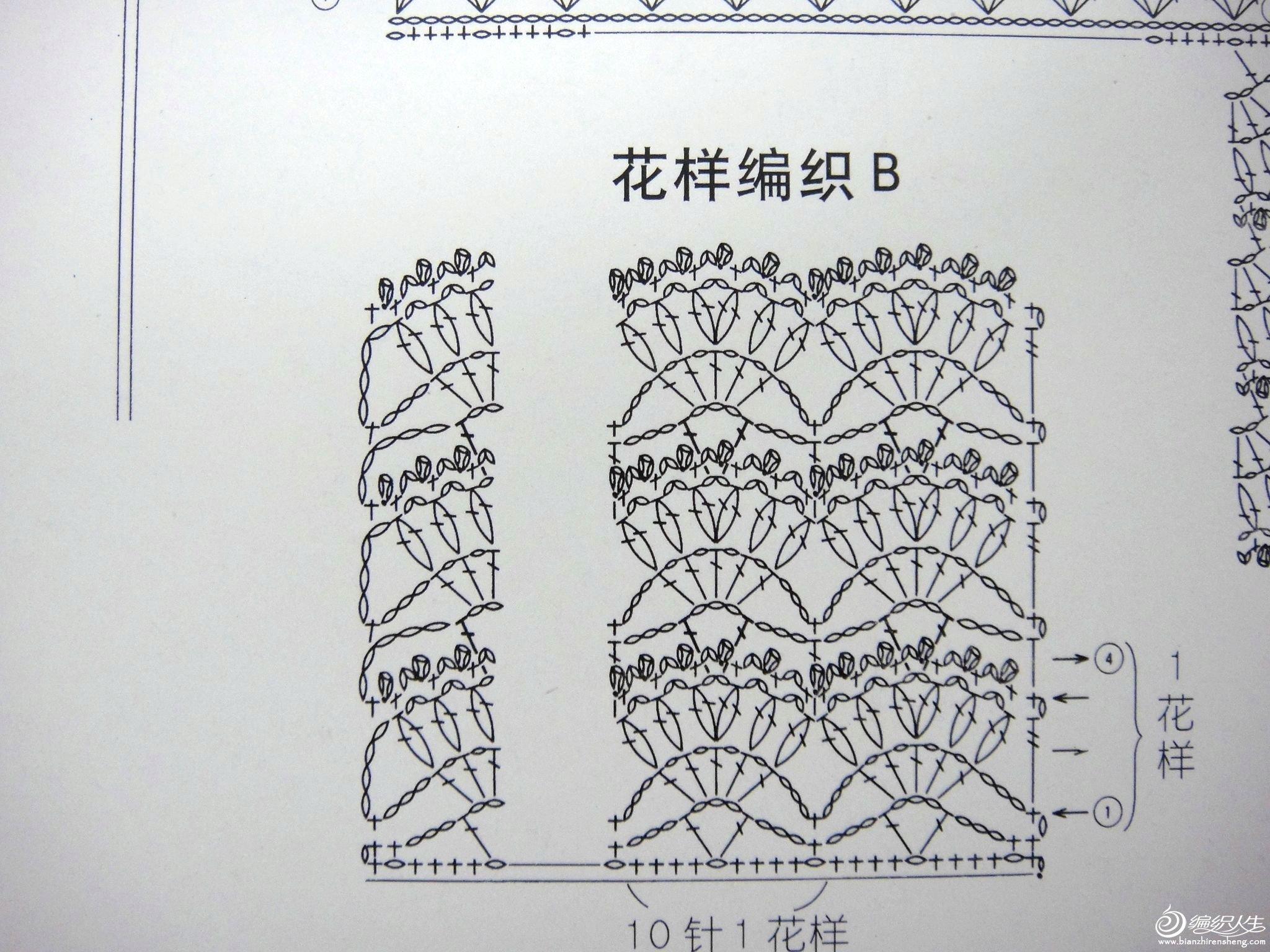 DSC05776.JPG