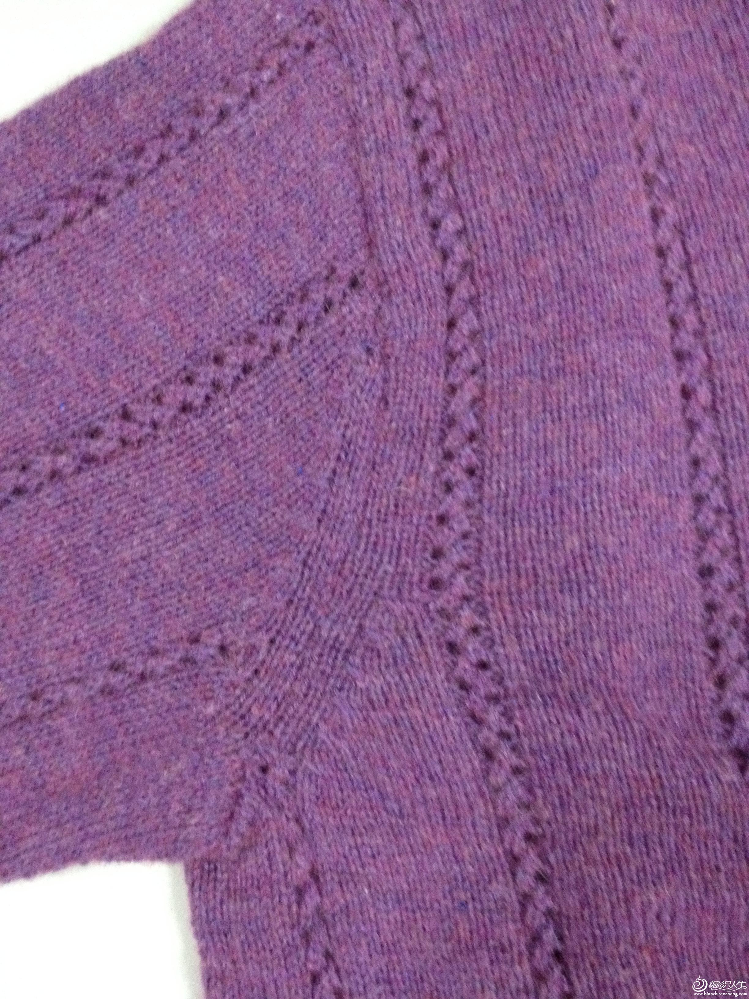 紫肩.JPG