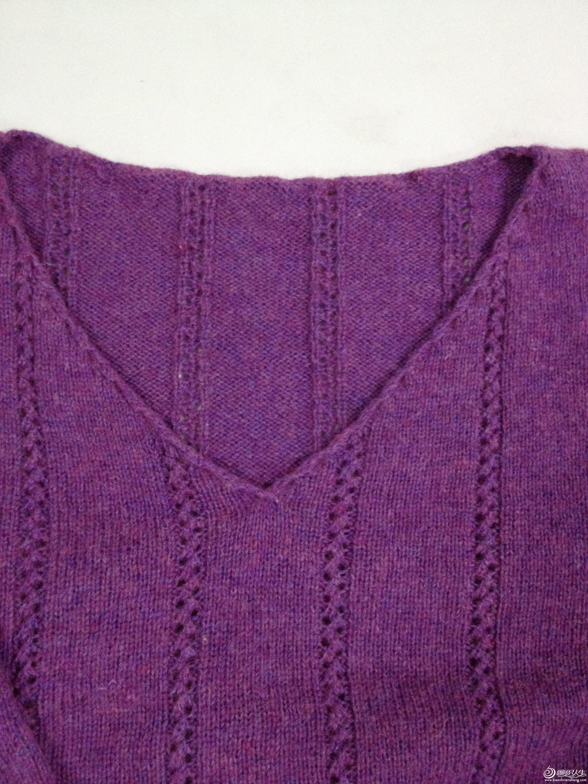 紫领.JPG