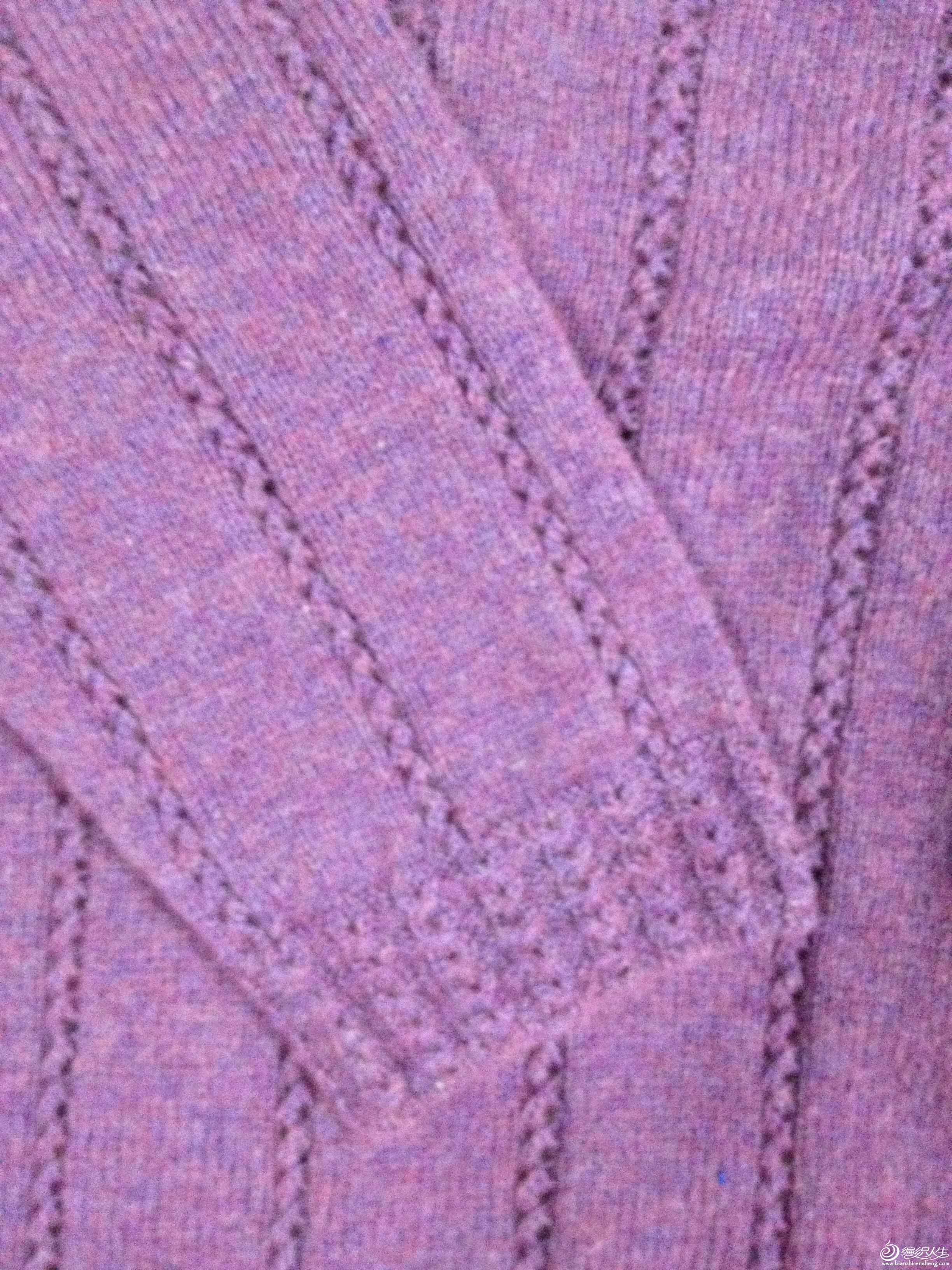 紫袖.JPG