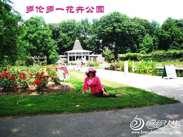 花卉公园 432--.jpg