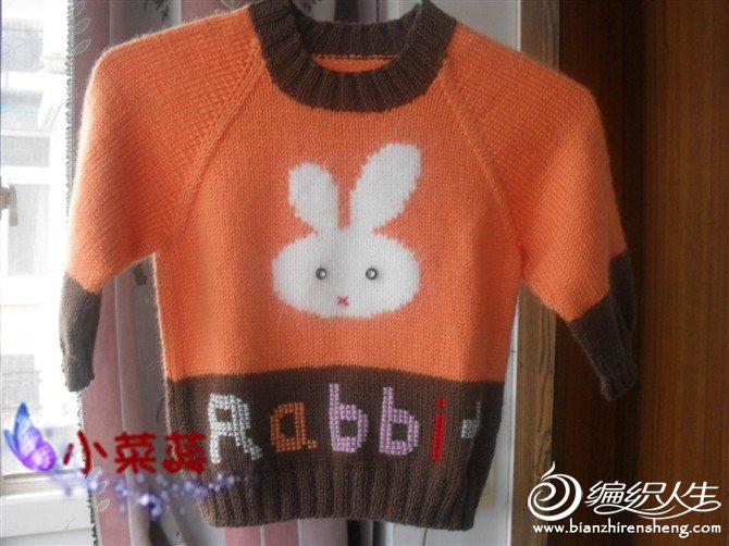 兔兔衣_副本.jpg