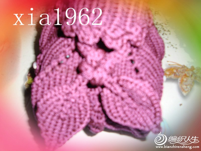 DSC02235_副本.jpg