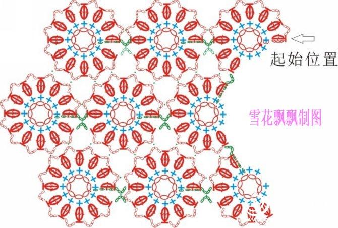 杭白菊-5.jpg