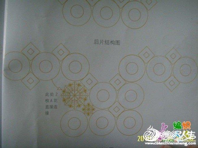 姜黄10.jpg