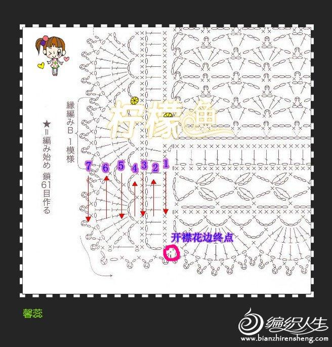 馨蕊-21开襟花边图解.jpg
