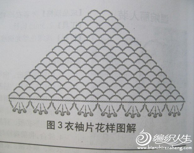太阳花图解4.jpg