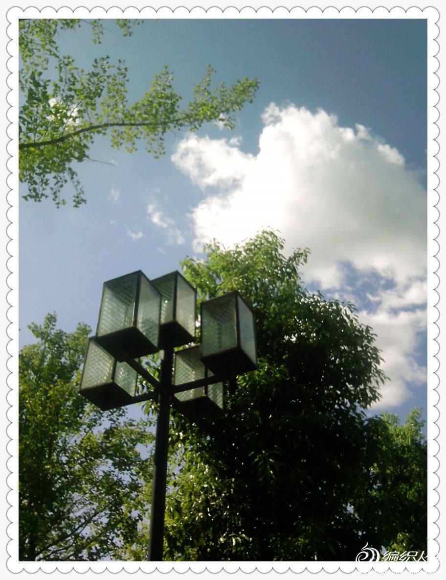 树、灯与云.jpg