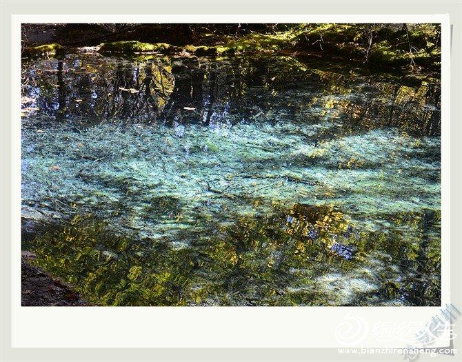 金色池塘.jpg