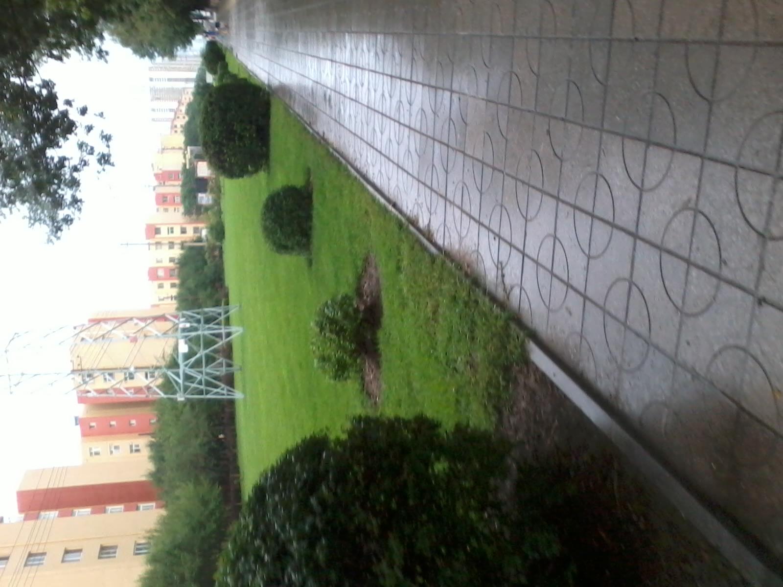 雨后的街道
