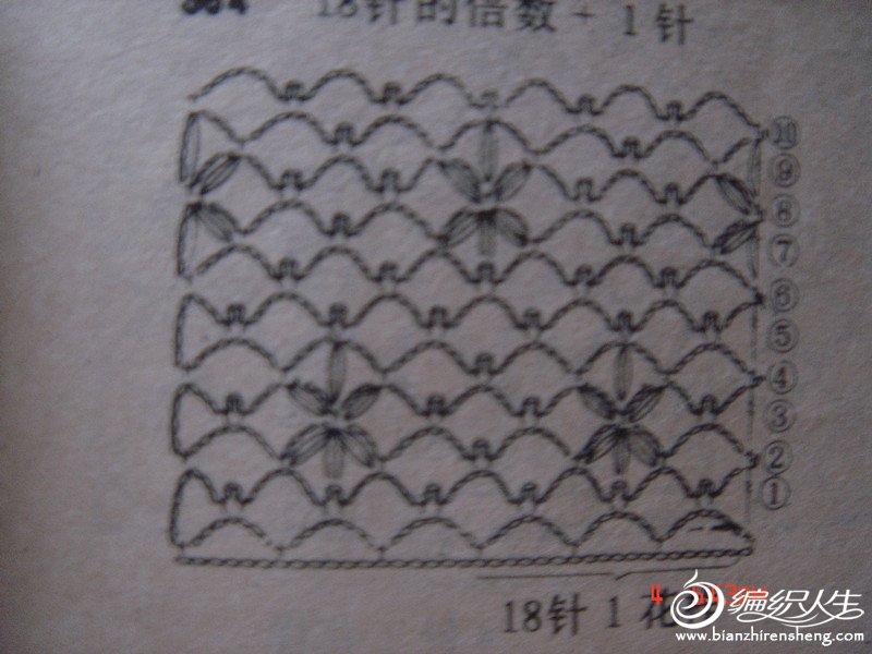 DSC00026 (2).JPG